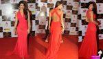 Priyanka Chopra : A film has its own destiny