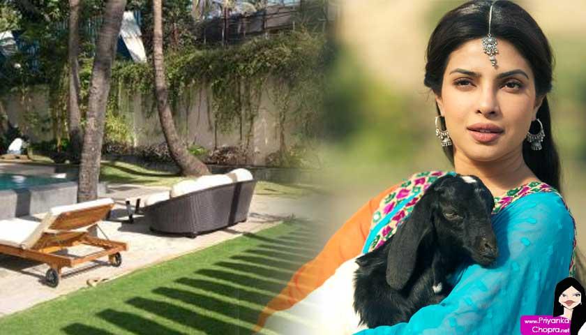 Priyanka Chopra, bungalows